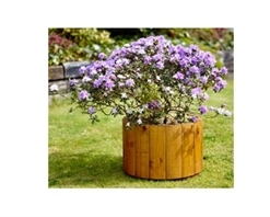 Tom Chambers Arran Round Planter