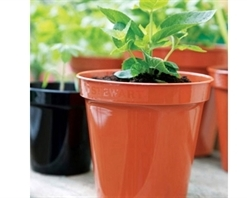 Stewart Premium Flower Pot Terracotta