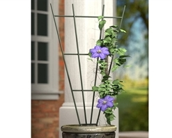 Panacea Fan Pot Trellis